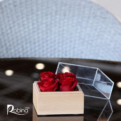 50FR19R0-L-باکس 4گل قرمز