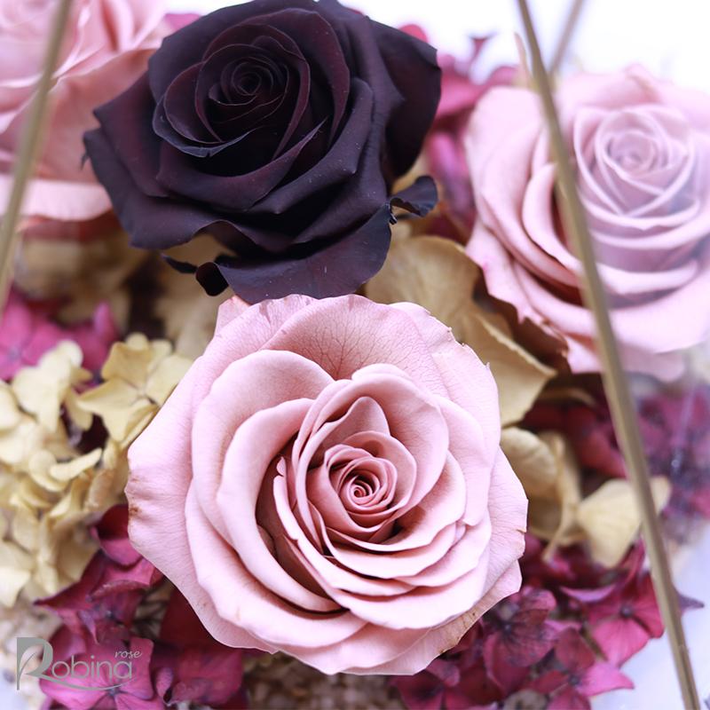 نگهداری از گل رز جاودان