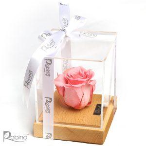 گل رز جاودان صورتی مدل رزیتا پایه چوبی