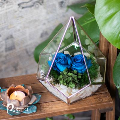 30DF34B7-L-آبگینه دو گل آبی