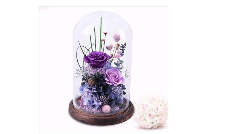 گل جاودان روبینارز معجزه ماندگار