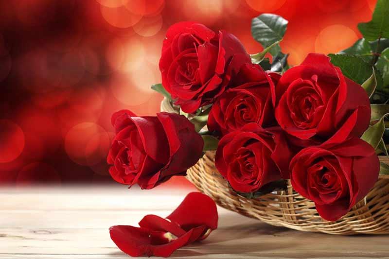 گل ولنتاین دسته گل ولنتاین